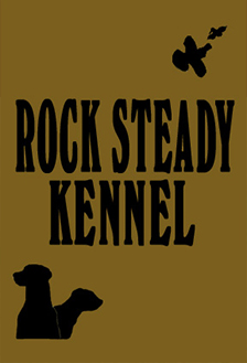 Rock Steady Kennels
